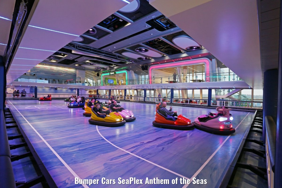 Bumper Cars SeaPlex Anthem of the Seas