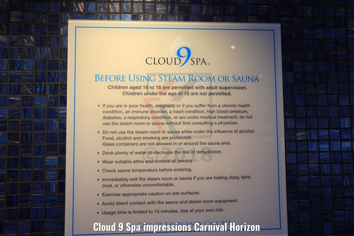 Cloud 9 Spa impressions Carnival Horizon