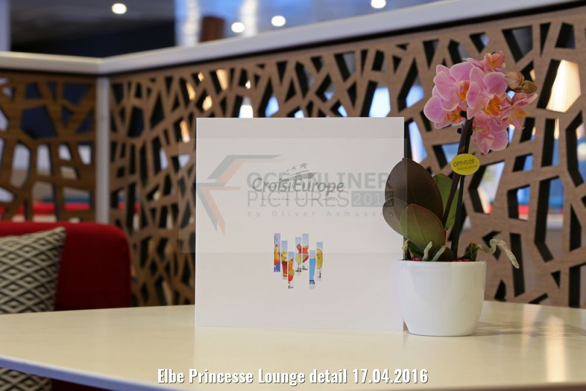 Elbe Princesse Lounge detail 17.04.2016