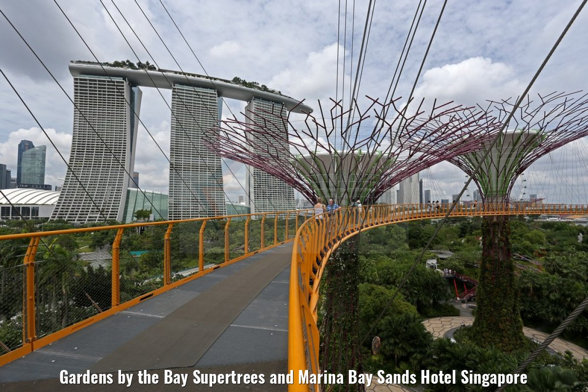 Gardens by the Bay Supertrees and Marina Bay Sands Hotel Singapore