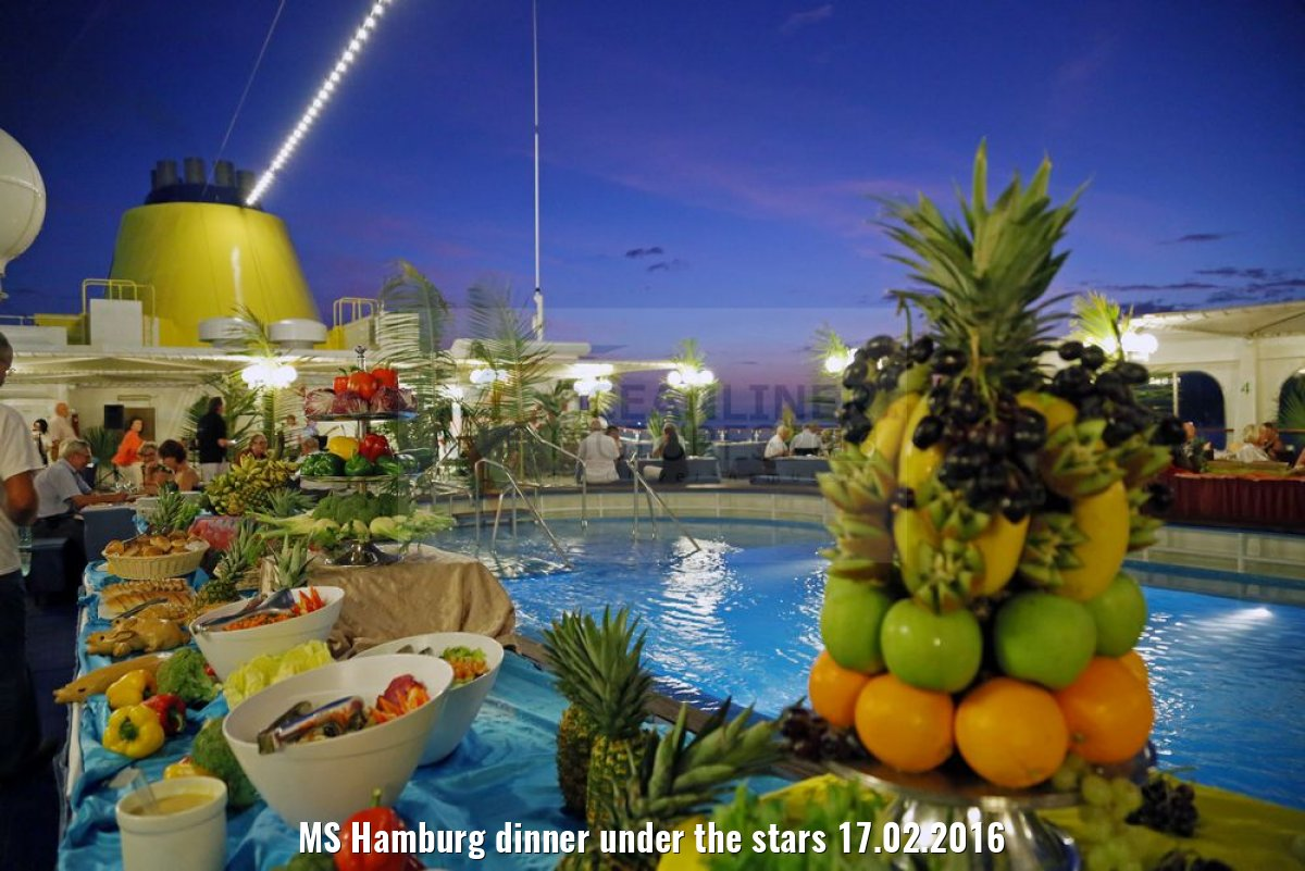 MS Hamburg dinner under the stars 17.02.2016