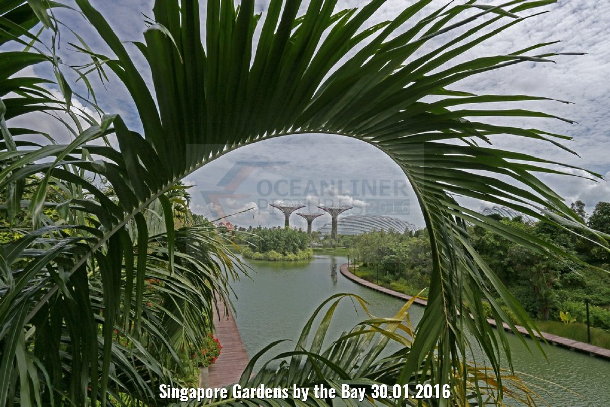 Singapore Gardens by the Bay 30.01.2016