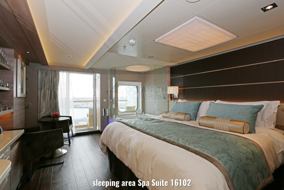 sleeping area Spa Suite 16102