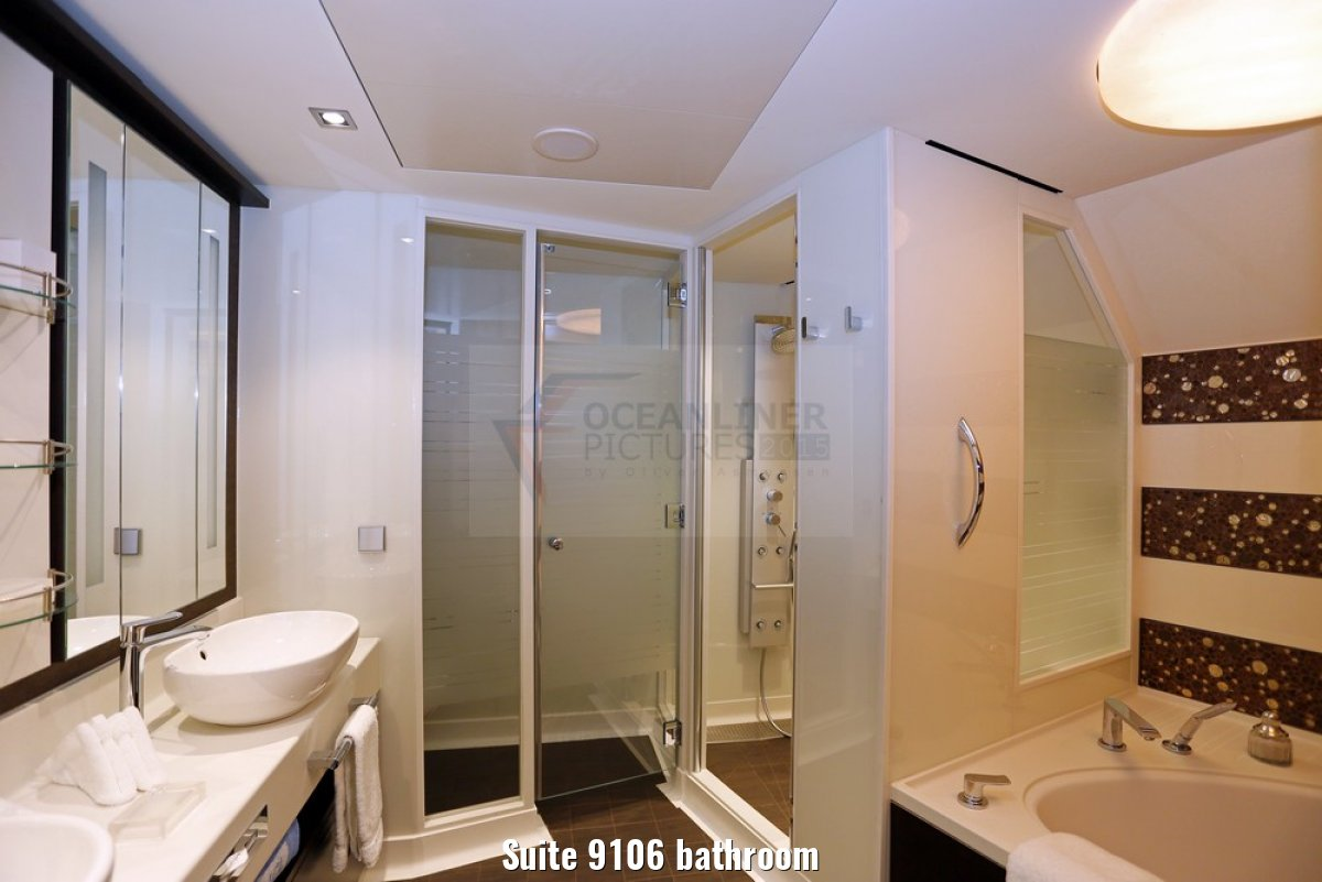 Suite 9106 bathroom