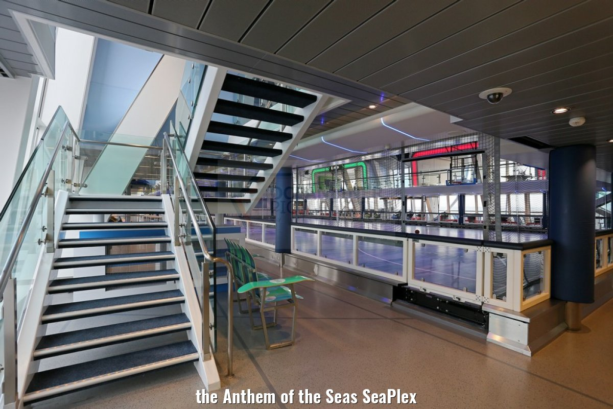 the Anthem of the Seas SeaPlex