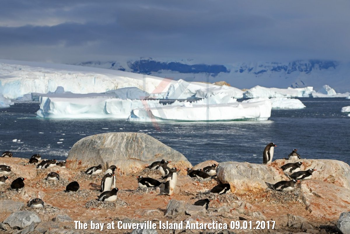 The bay at Cuverville Island Antarctica 09.01.2017