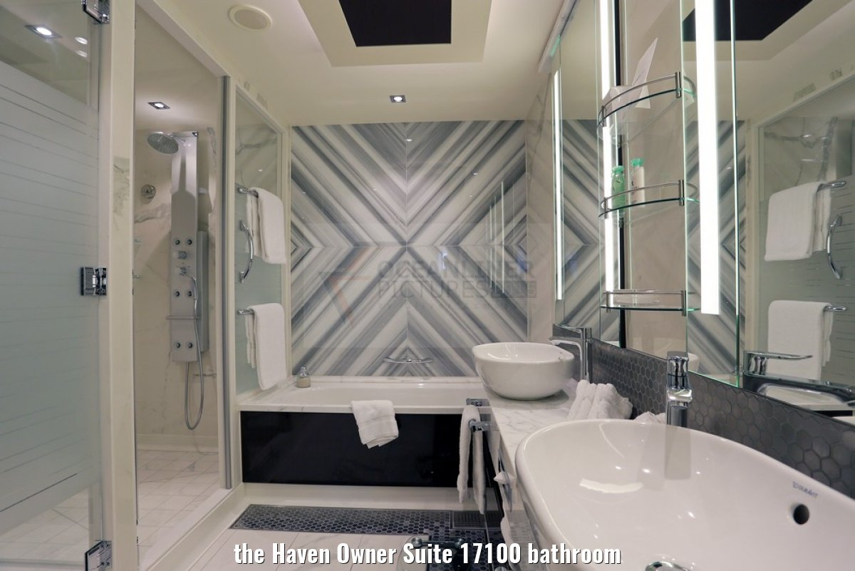 the Haven Owner Suite 17100 bathroom