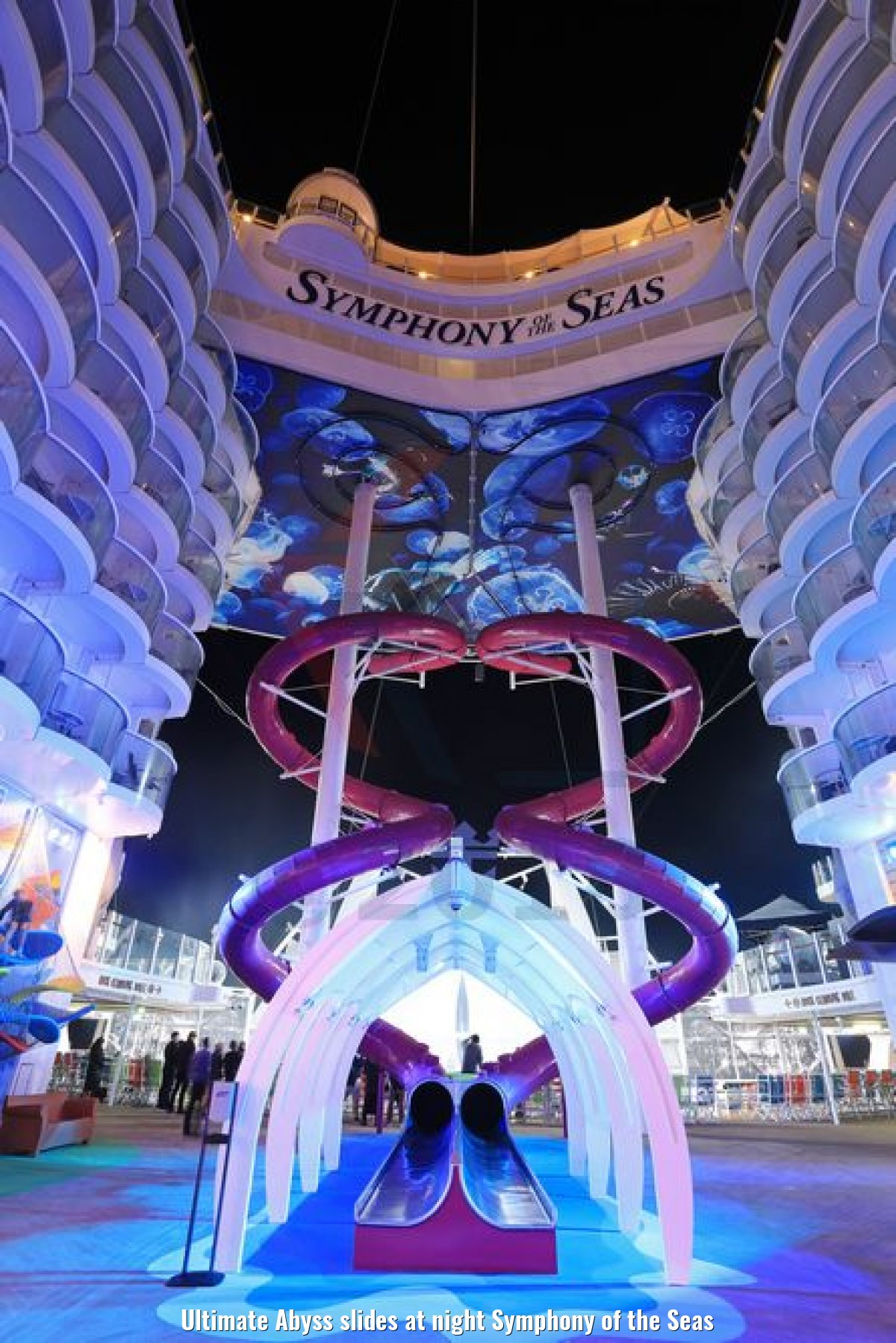 Ultimate Abyss slides at night Symphony of the Seas