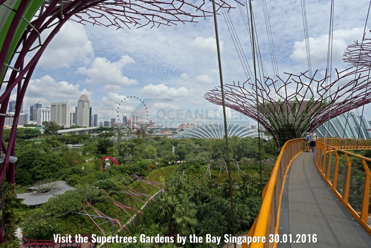 Visit the Supertrees Gardens by the Bay Singapore 30.01.2016